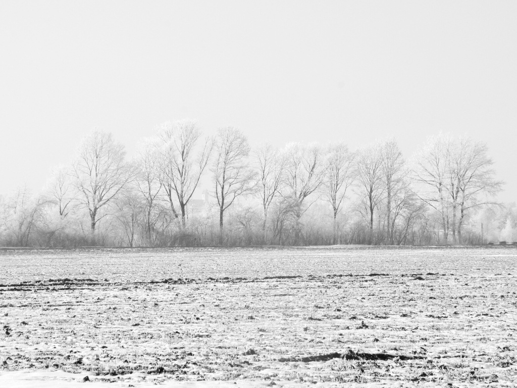 24notes - Winterimpressionen aus Oberschwaben