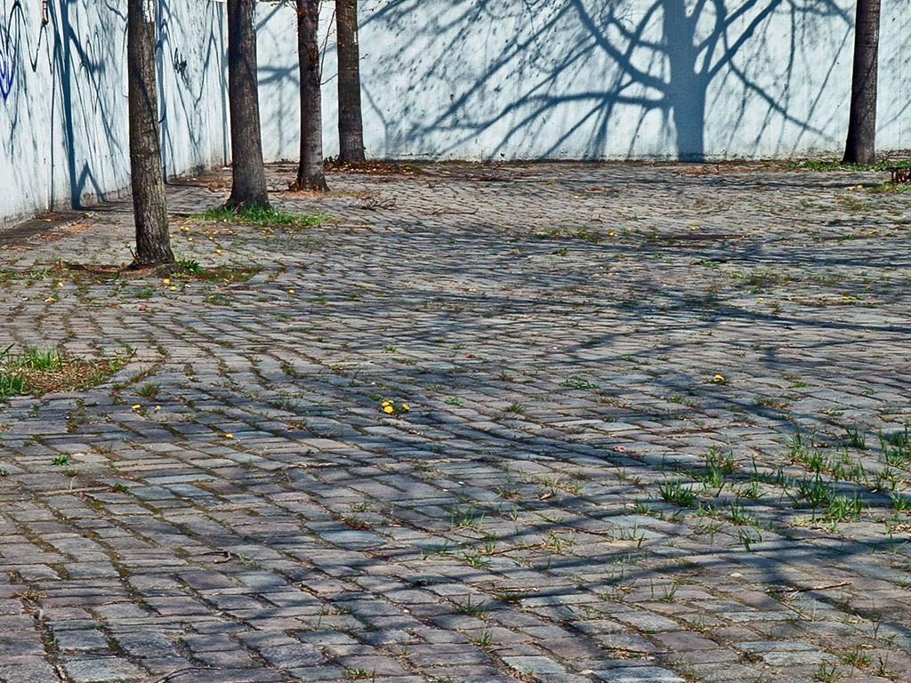 Zwischen gegenständlicher und abstrakter Fotografie