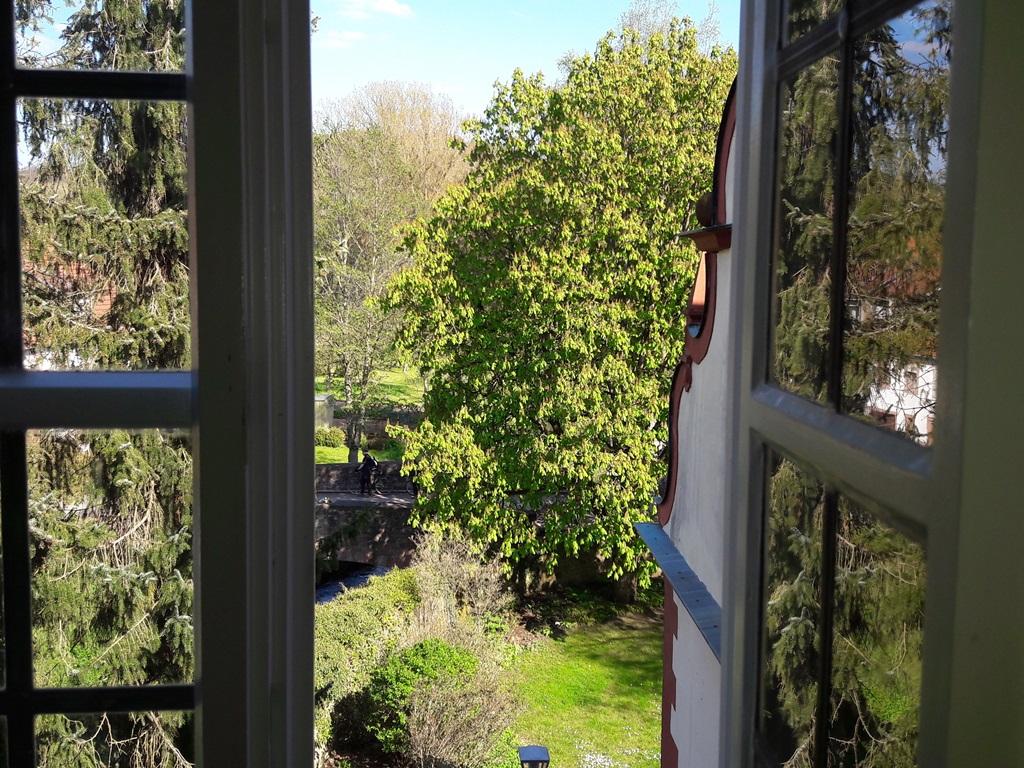 Das Fenster zur Welt